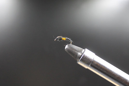 Black Biot Buzzer