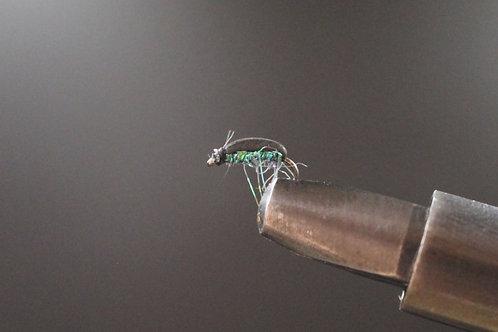 Black Beetle Green Holo
