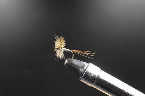Spent Mayfly
