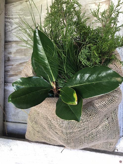 Fresh Mixed Greenery Bag