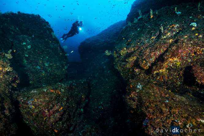 Portofino_282_©_David_Kocher.jpg