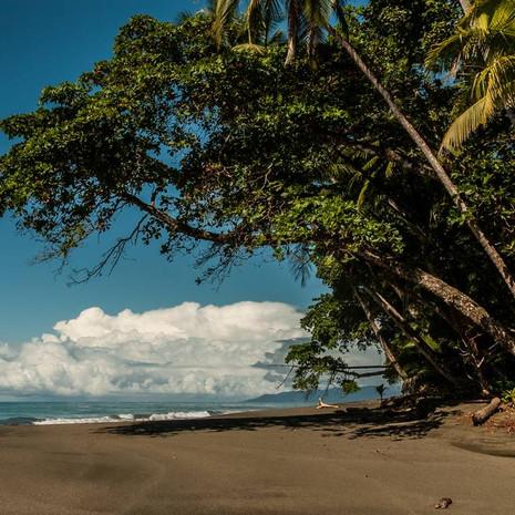 Costarica - Frédy Kocher