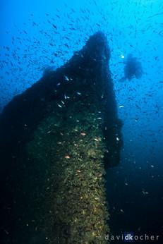 Portofino_42_©_David_Kocher.jpg