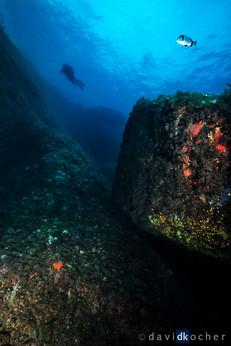Portofino_288_©_David_Kocher.jpg