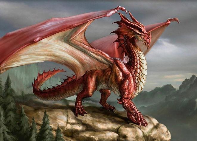 dragon-05.jpg