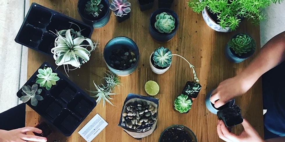 Plants & Pottery Party