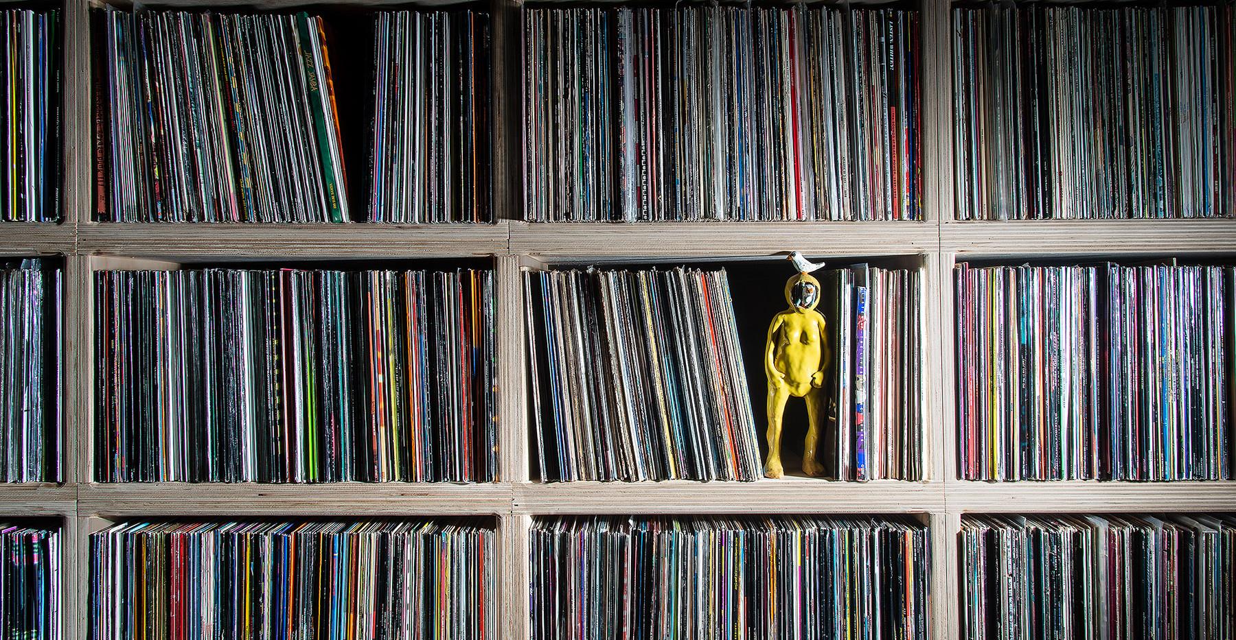"""Tower records"" Daniela Boni record shelf.jpg"