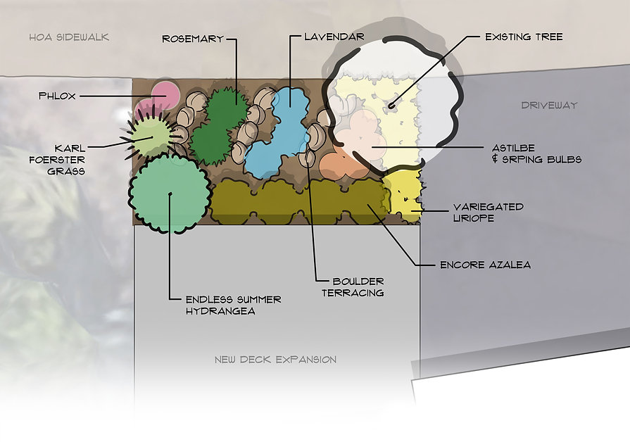 frelly concept plan 7.24.20.jpg