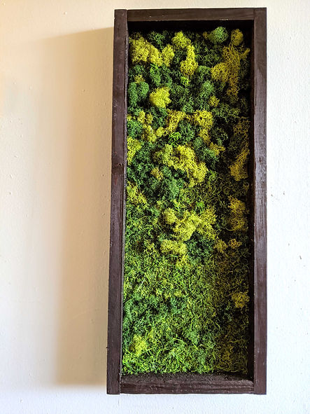 small greenwall 2.jpg