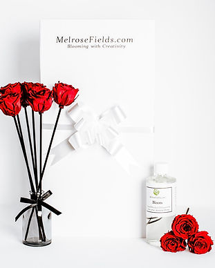 Melrose Mini Red Rose Reed Diffuser Gift