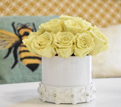 Pale Yellow Preserved Rose Hat Box II rs