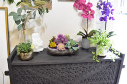 10 Artificial Plants Succulents and Orch
