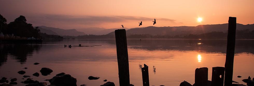 Ullswater Ducks