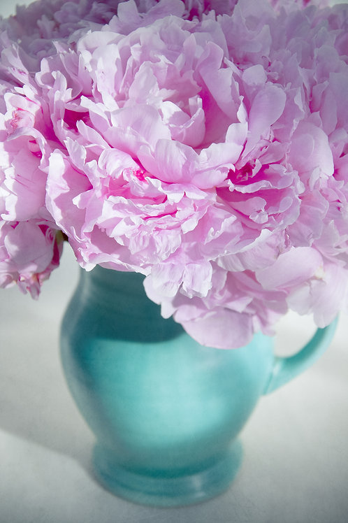 My Green Jug of Peonies