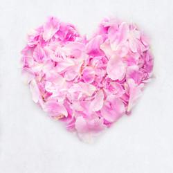 Peony Petal Heart