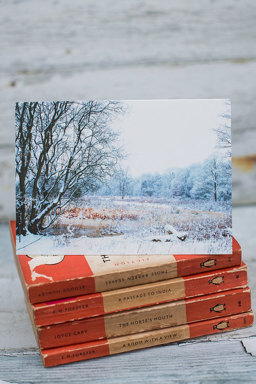 Brown Moss Winter Landscape