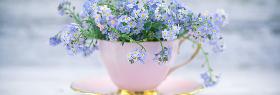 Forget Me Nots in Pink Teacup
