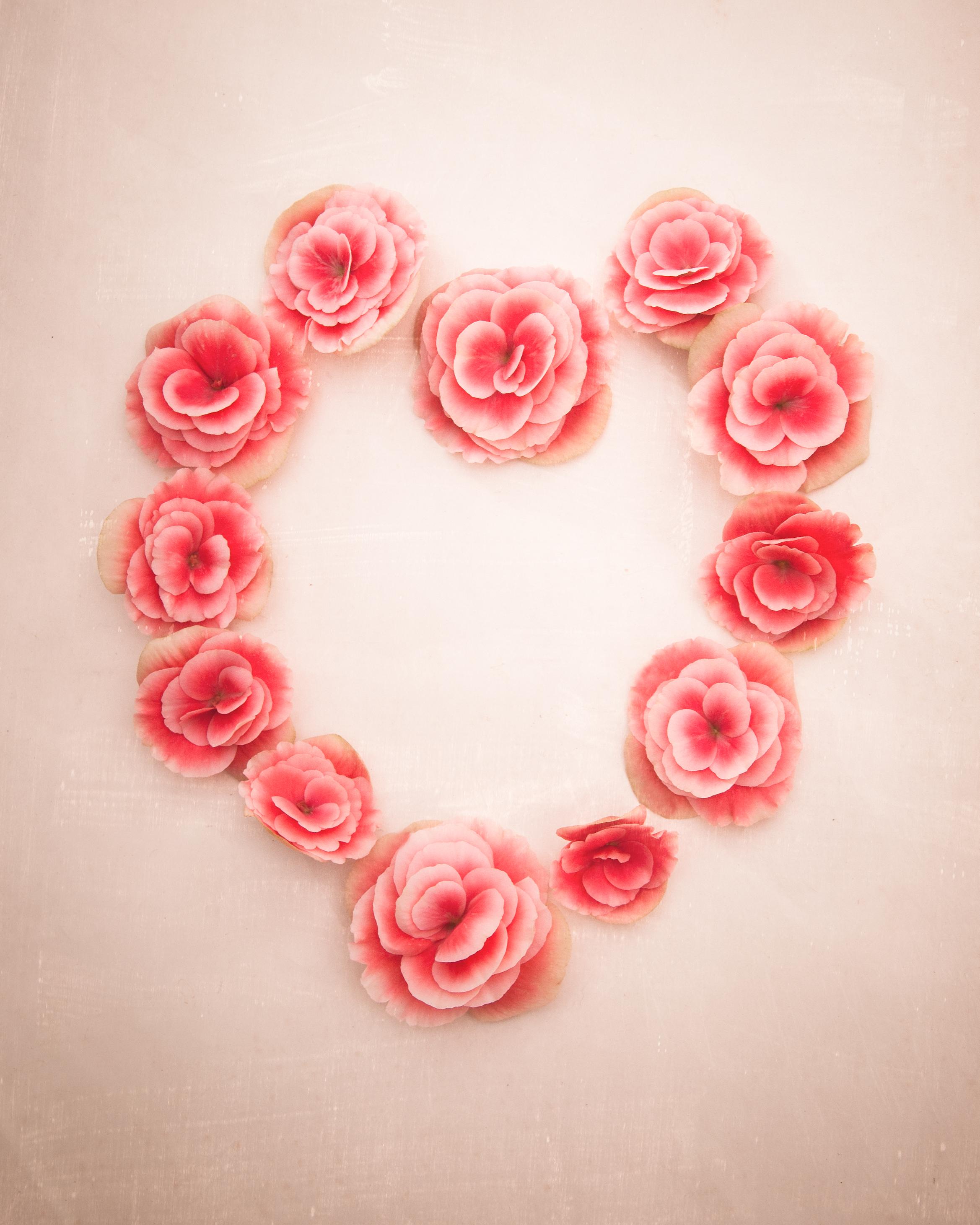 Begonia Heart