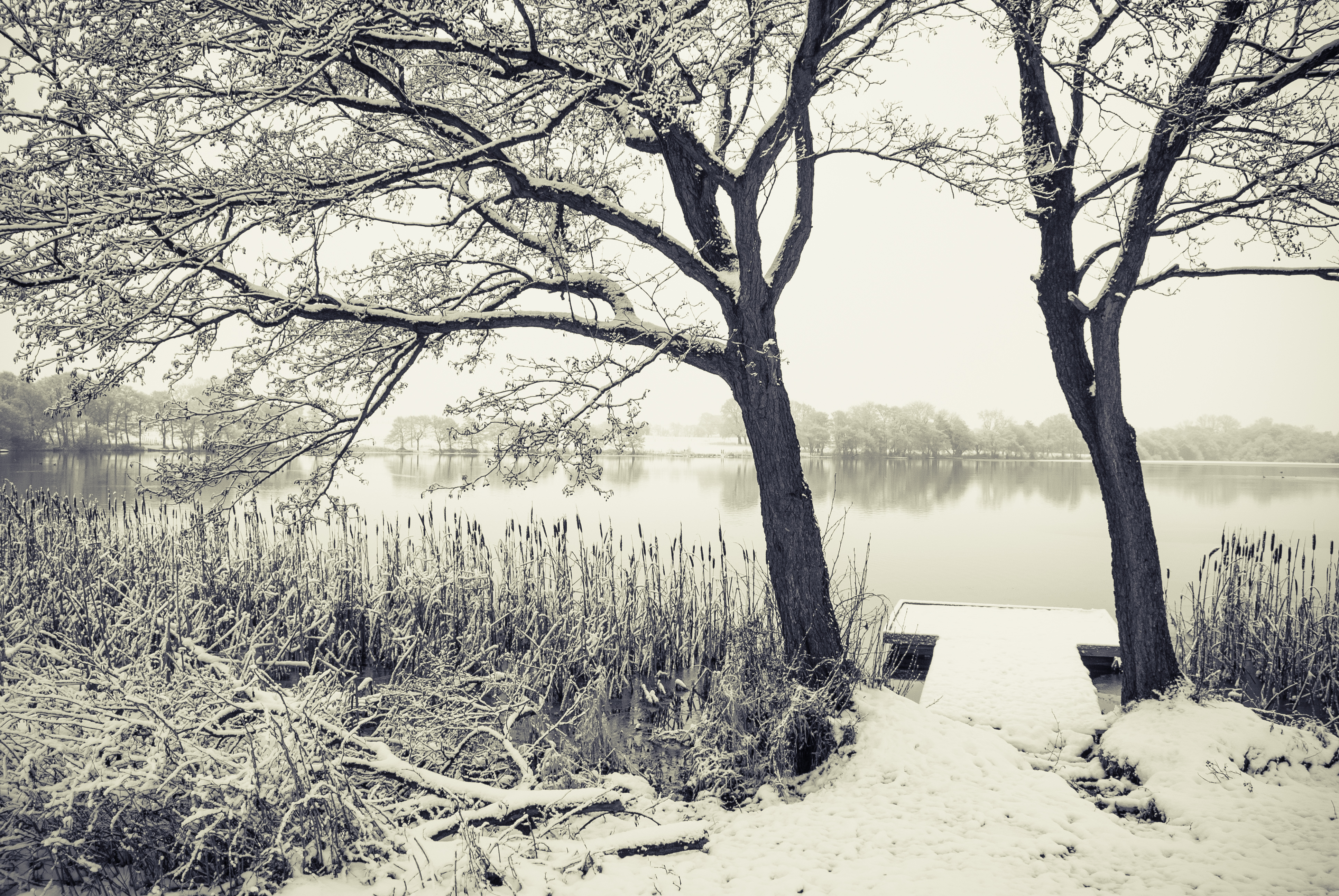 Snowed Osmere