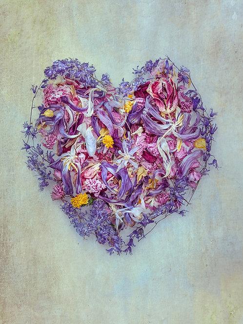 Spring Dried Petal Heart