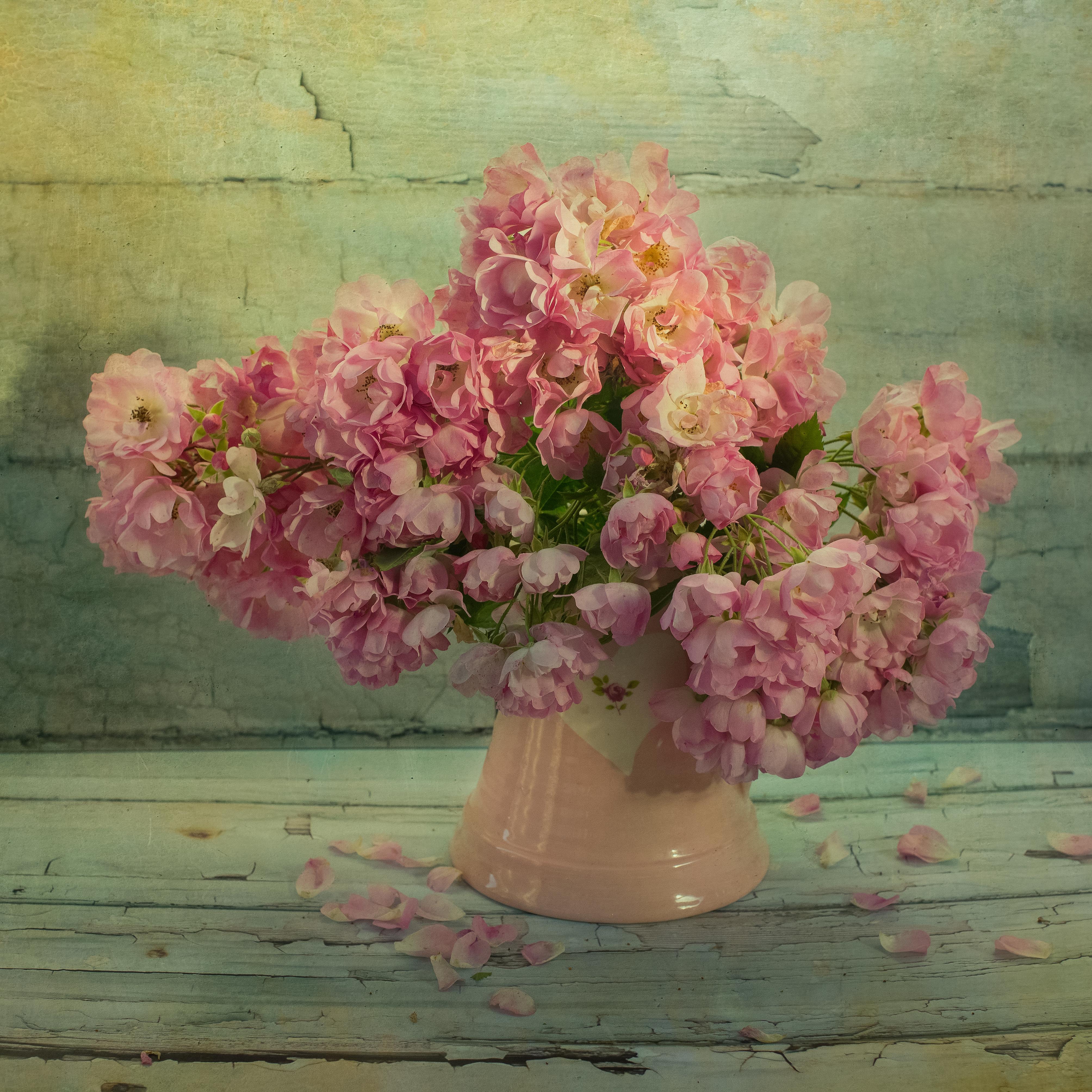 My Pink Rambling Roses