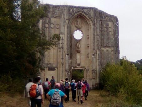 Randonnée autour d'Avon-lès-Roches