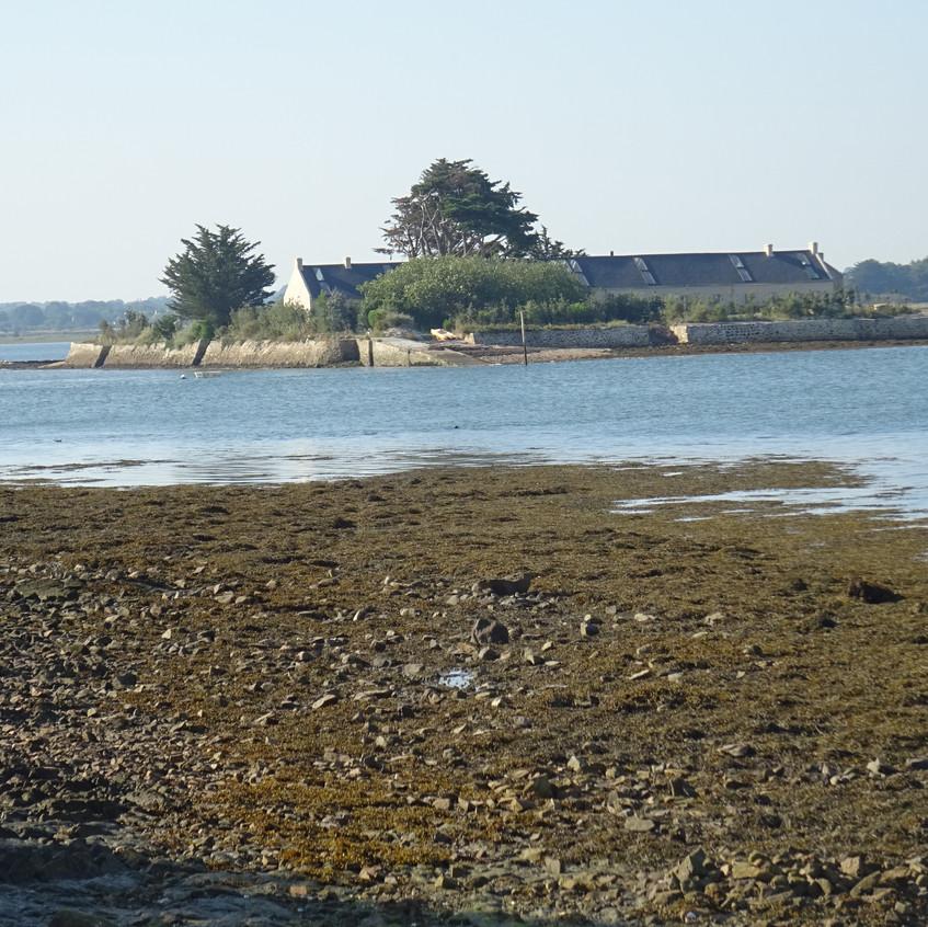 Ile Quistinic(Le Passage)