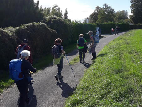 Randonnée à Pussigny et Antogny-le-Tillac du dimanche 4 octobre 2020