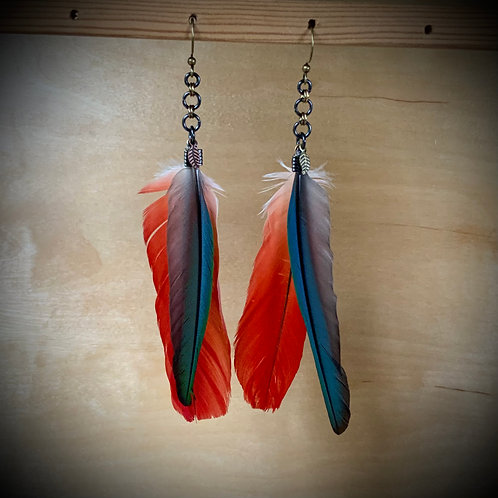 Parrot Feather Earrings on chains