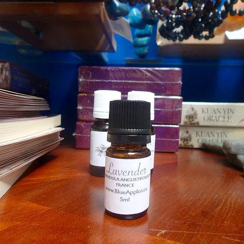 Lavender 5ml Undiluted essential oil
