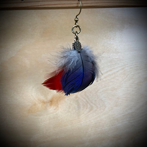 Macaw Feather Earring (SINGLE) curved