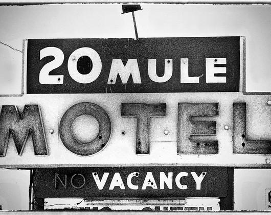 20 Mule Motel