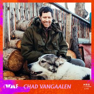 Chad Vangaalen_IG.jpg