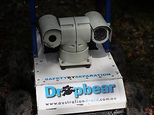 services - drop bear.png