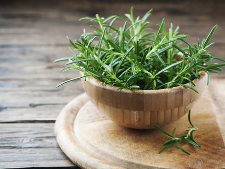 Rosemary for restoring your hair