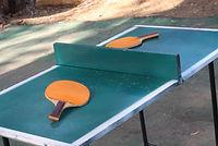 טניס שולחן - שולחן פינג פונג