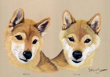 'Kato & Shiko'