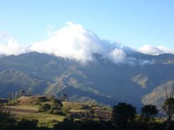 Ajos Pampa