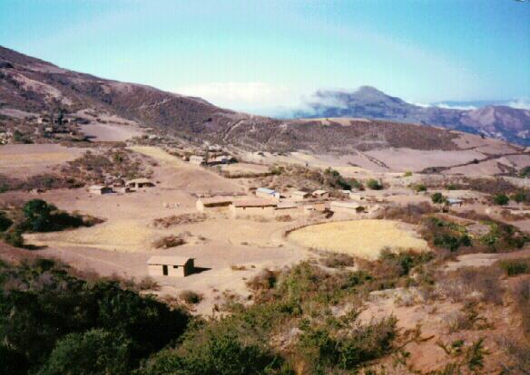Manzanal