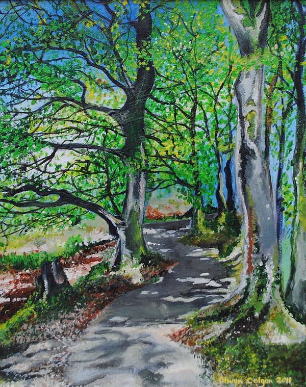Lough Walk