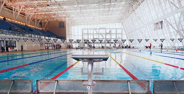 piscina y partidor.jpg