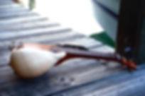 The Original Conchalele musical instrument