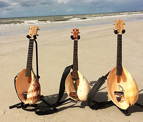 Conchalele musical instruments on a beach