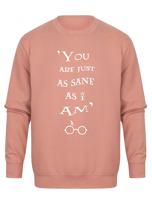 You Are Just As Sane As I Am - Unisex Fit Sweater