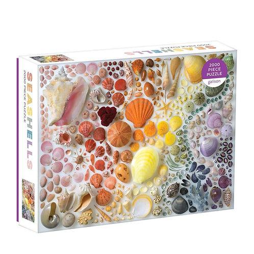 Rainbow seashells puzzle