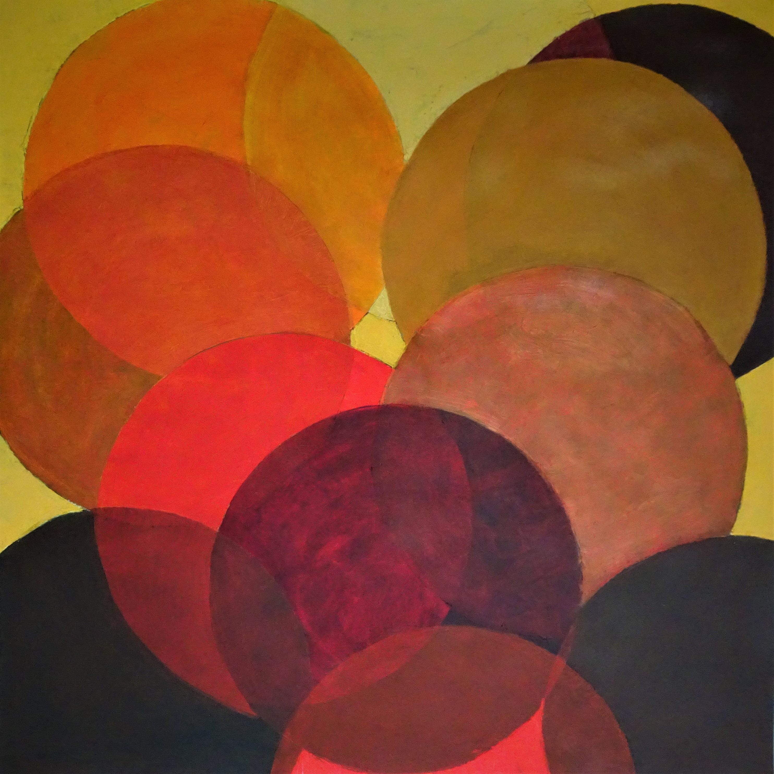 Cirkels (8)