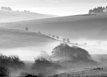 P65A4819 44 - Morning - Dew - Exmoor.jpg