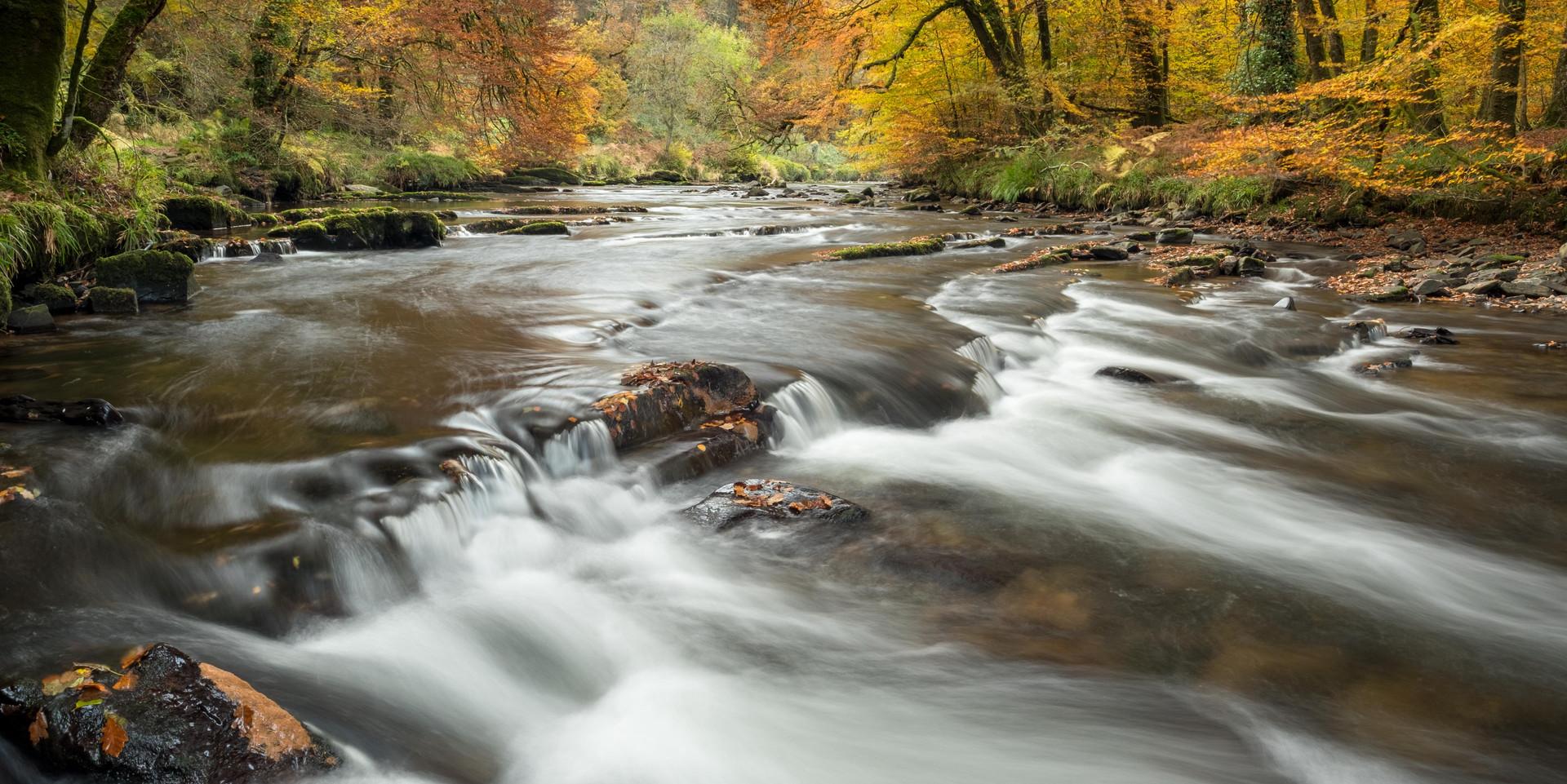 (October) Autumn Flow .jpg