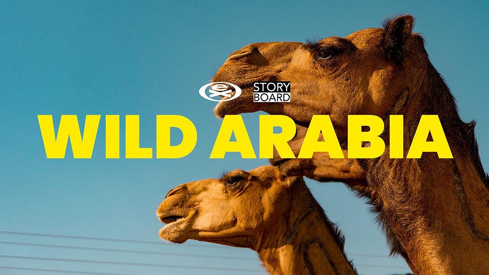 Wild Arabia Cover.jpg