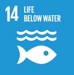 UN SDG 14.png